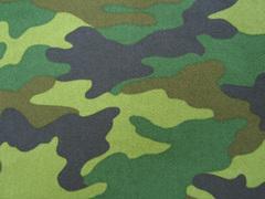 camouflage_light.jpg