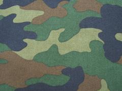 camouflage_standard.jpg