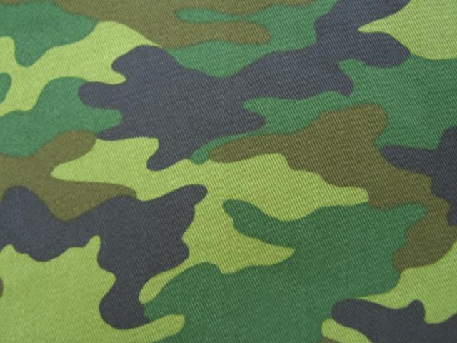 http://www.naigai-group.co.jp/books-img/camouflage_light.jpg